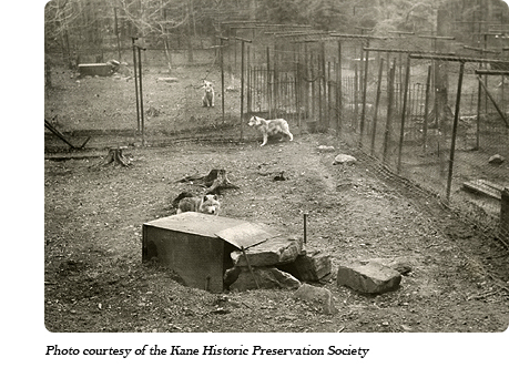 A view of the pens at Dr. McCleery's lobo wolf park along Route 6 between Kane and Mt. Jewett, PA.